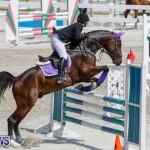 FEI World Jumping Challenge Bermuda, March 31 2018-8027