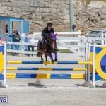 FEI World Jumping Challenge Bermuda, March 31 2018-8037