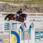 FEI World Jumping Challenge Bermuda, March 31 2018-8056