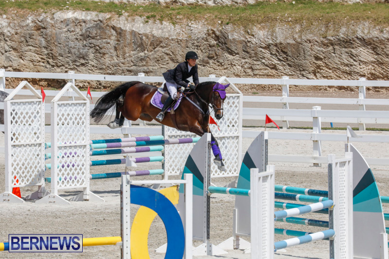 FEI-World-Jumping-Challenge-Bermuda-March-31-2018-8056