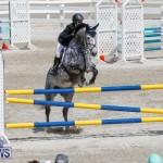 FEI World Jumping Challenge Bermuda, March 31 2018-8060