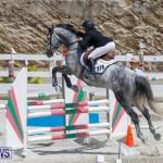 FEI World Jumping Challenge Bermuda, March 31 2018-8068