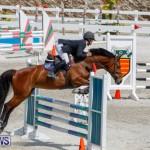 FEI World Jumping Challenge Bermuda, March 31 2018-8145