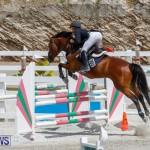 FEI World Jumping Challenge Bermuda, March 31 2018-8172