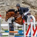 FEI World Jumping Challenge Bermuda, March 31 2018-8176