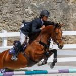 FEI World Jumping Challenge Bermuda, March 31 2018-8183
