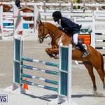 FEI World Jumping Challenge Bermuda, March 31 2018-8211