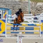 FEI World Jumping Challenge Bermuda, March 31 2018-8218