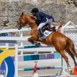 FEI World Jumping Challenge Bermuda, March 31 2018-8232