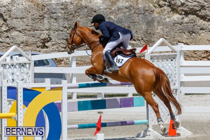 FEI-World-Jumping-Challenge-Bermuda-March-31-2018-8232