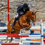FEI World Jumping Challenge Bermuda, March 31 2018-8239