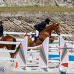 FEI World Jumping Challenge Bermuda, March 31 2018-8249