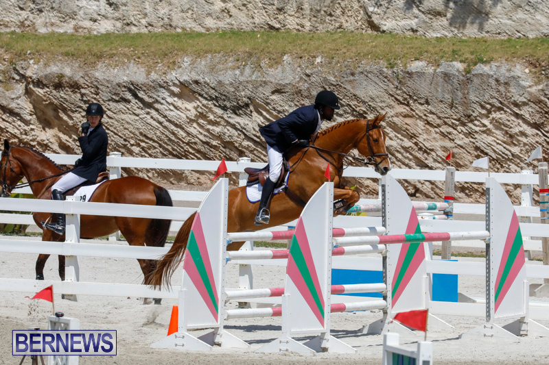 FEI-World-Jumping-Challenge-Bermuda-March-31-2018-8249
