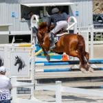 FEI World Jumping Challenge Bermuda, March 31 2018-8271