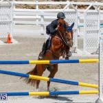 FEI World Jumping Challenge Bermuda, March 31 2018-8281