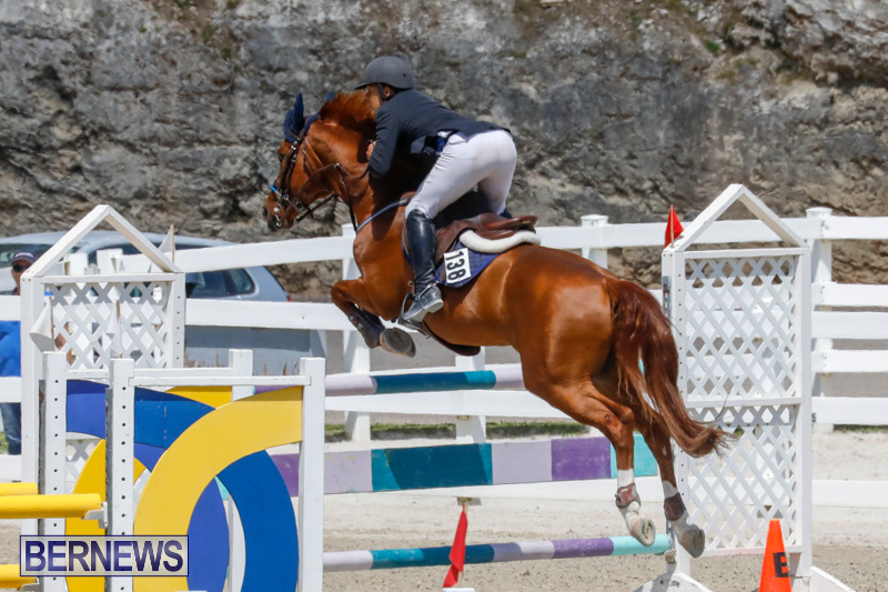 FEI-World-Jumping-Challenge-Bermuda-March-31-2018-8292