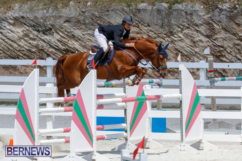 FEI-World-Jumping-Challenge-Bermuda-March-31-2018-8316