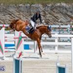FEI World Jumping Challenge Bermuda, March 31 2018-8318
