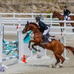 FEI World Jumping Challenge Bermuda, March 31 2018-8322