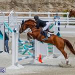 FEI World Jumping Challenge Bermuda, March 31 2018-8323