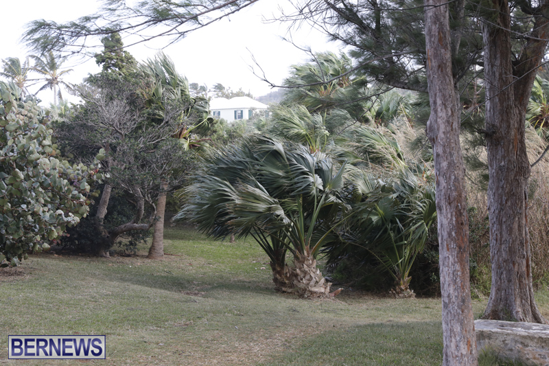 Outside-Flatts-Inlet-Bermuda-March-5-2018-2-1