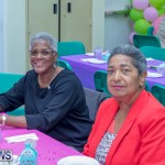 Senior's Tea at Whitney Bermuda March 23 2018 (13)