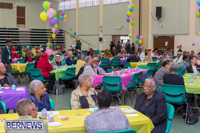 Seniors-Tea-at-Whitney-Bermuda-March-23-2018-49