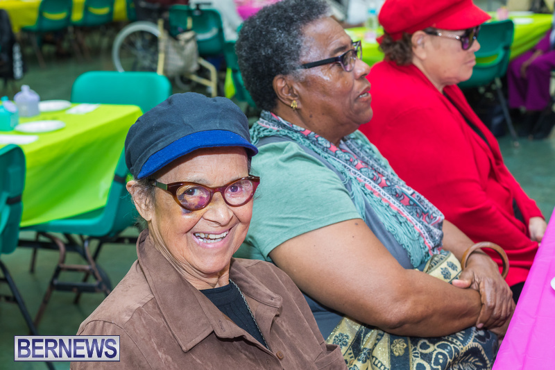 Seniors-Tea-at-Whitney-Bermuda-March-23-2018-51