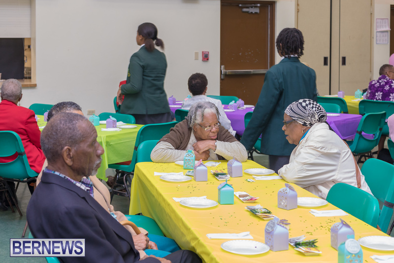 Seniors-Tea-at-Whitney-Bermuda-March-23-2018-8