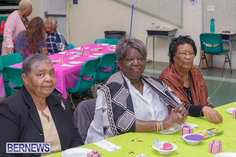 Seniors-Tea-at-Whitney-Bermuda-March-23-2018-9