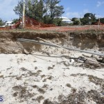 Shelly Bay Beach Park Bermuda March 5 2018 (14)