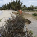 Shelly Bay Beach Park Bermuda March 5 2018 (5)