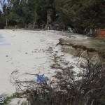 Shelly Bay Beach Park Bermuda March 5 2018 (6)