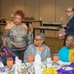 Women's Tea Bermuda March 2018 (20)