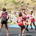 netball Bermuda March 21 2018 (17)