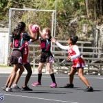 netball Bermuda March 21 2018 (19)