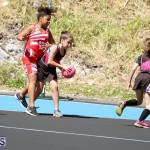 netball Bermuda March 21 2018 (3)
