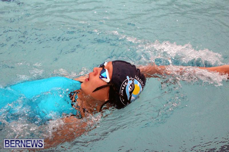 swimming-Bermuda-March-21-2018-10
