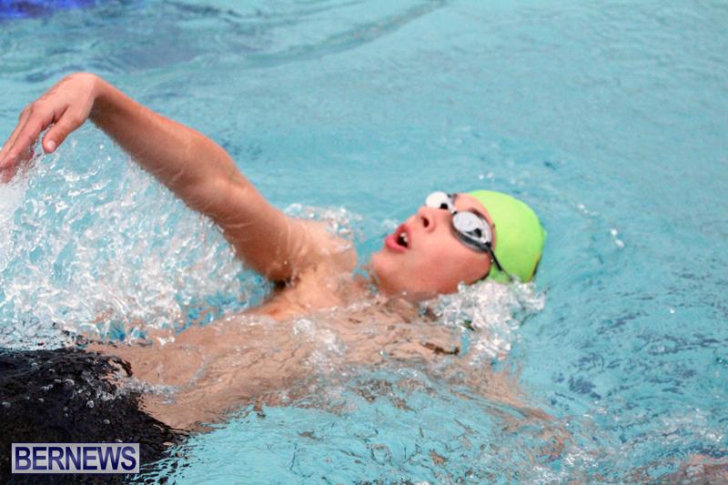 swimming-Bermuda-March-21-2018-15