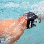 swimming Bermuda March 21 2018 (16)