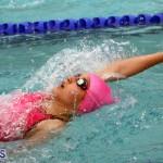 swimming Bermuda March 21 2018 (9)