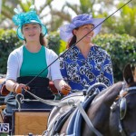 Ag Show at Botanical Gardens Bermuda, April 21 2018-2390