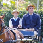 Ag Show at Botanical Gardens Bermuda, April 21 2018-2398