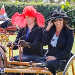 Ag Show at Botanical Gardens Bermuda, April 21 2018-2412