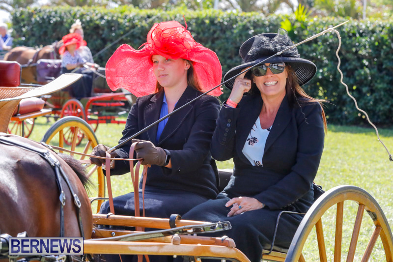 Ag-Show-at-Botanical-Gardens-Bermuda-April-21-2018-2412