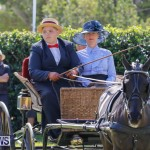Ag Show at Botanical Gardens Bermuda, April 21 2018-2432