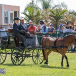 Ag Show at Botanical Gardens Bermuda, April 21 2018-2436