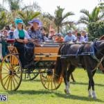 Ag Show at Botanical Gardens Bermuda, April 21 2018-2441