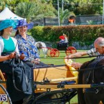 Ag Show at Botanical Gardens Bermuda, April 21 2018-2517