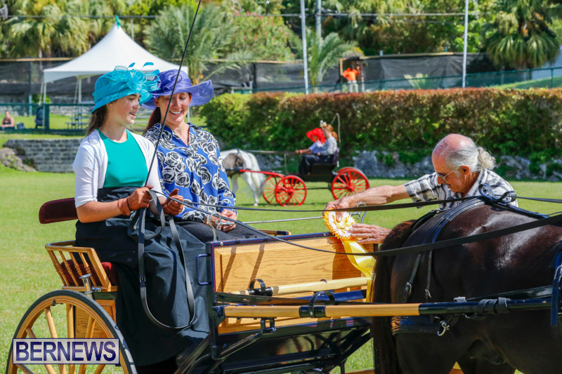 Ag-Show-at-Botanical-Gardens-Bermuda-April-21-2018-2517